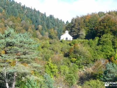 Selva de Irati - Puente del Pilar la tejera de lozoya puente 12 de octubre rutas senderismo en madri
